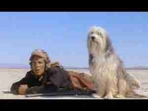 Boy and his Dog - Don Johnson